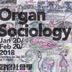 邓箭今——器官社会学 (个展)
