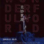 《美妙世界》当代艺术展