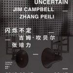 吉姆·坎贝尔 & 张培力——闪烁不定 (群展)