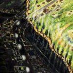 OSCAR OIWA - A LIGHT FILLED GINZA (个展)