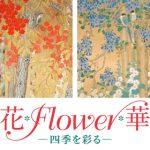 花、flower、华、添彩四季